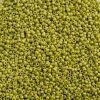 Miyuki Seed Bead 15/0 Frosted Glazed/rainbow Green Lime Matte Aurora Borealis